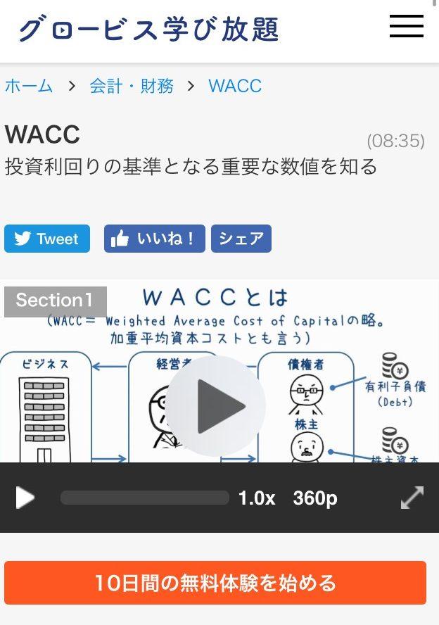 globis-wacc